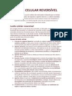 Lesão_celular_reversvel.docx