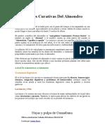 Propiedades Curativas Del Almendro
