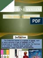 Endocrine Sytem ANAP