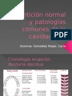 Dentición Normal y Patologías Comunes de La Cavidad