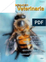 Impacto de la africanización de las abejas en México.
