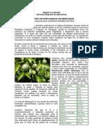 informe_inteligencia_de_mercado_maracuya.pdf