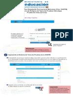 Manual Online (1)