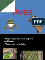 Aves.pptx