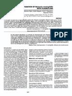 Electroporation of Neisseria meningitidis with plasmid DNA