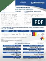 HDS GENETRON® 22.pdf