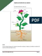 Manual de Huerta Edicion Word