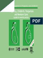Pregnancy Childbirth Postpartum and Newborn Care