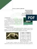 88510535-Anatomia-Do-Rato.pdf