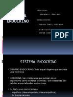 Expo Sistema Endocrino