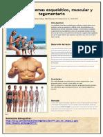Sistema Esquelitico, Muscular y Tengumentario Integradora Etapa 2 Jamz