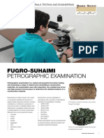 Flyer Petrography Email
