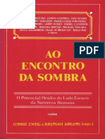 Ao Encontro Da Sombra - Connie Zweig