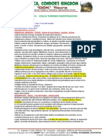 _AREQUIPA-COLCA-UNSA.docx