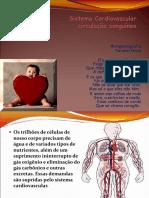 Sistema Cardiovascular 8 ano.ppt