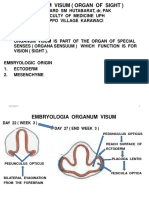Organum Visualis 2015t