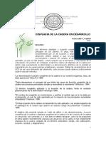 01 - GUIA CLINICA-DISPLASIA DE LA CADERA-HIUSJ-2011 (1).pdf
