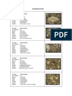 Deskripsi Foraminifera Besar.docx