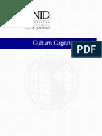 Cultura Organizacional Pte 8