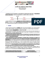 foca-no-resumo-exclusao-do-credito-tributario.pdf