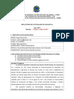 Relatório I semestre 2017 - Diego Nere.doc