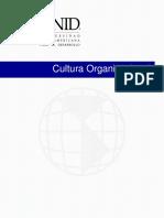 Cultura Organizacional Pte 10