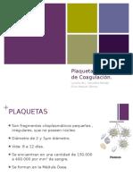 Expo Plaquetas y Coagulacion