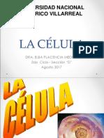 CÉLULA (2)