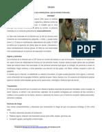 RP-COM3-K02 -Ficha 2