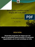 Principales Cambios en Las Etapas Del Ciclo Vital