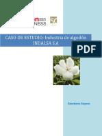 CASO INDALSA.docx