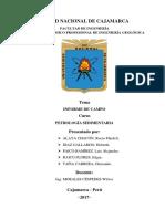 Informe Petrologia Sediementaria (2)