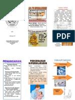 leaflet hiperbilirubin NICU.doc