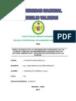 TRABAJO FITO VARGAS.docx
