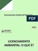 Licenciamento_municipal.pdf