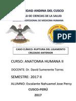 Informe Rotura de Ligamento Cruzado Interno
