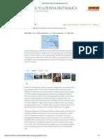 West Indies _ History & Map _ Britannica