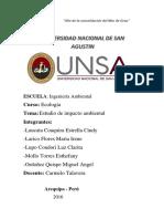 ESTUDIO DE IMPACTO AMBIENTAL 1.docx