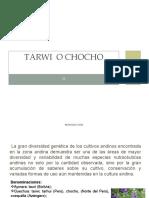 TARWI_-_PRESENTACION