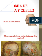 Anatomia de Cabeza y Cuello