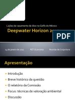 Lic3a7c3b5es Do Vazamento de c3b3leo No Golfo Do Mc3a9xico Rodrigo Andrade2