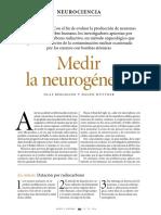 29 Medir La Neurogenesis