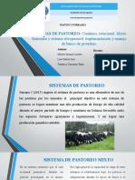 SISTEMAS-DE-PASTOREO.pptx