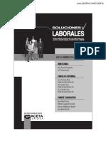 01. Enero Sol. Lab.  2017.pdf