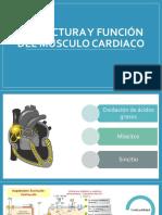 Fisiologia Cardiaca Cap 10