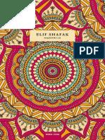 Elif Shafak - Majstor i Ja