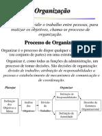 03 - Organização (Livro Maximiano)