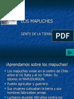 El Pueblo Mapuche