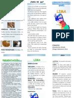 triptico-lima-.pdf