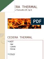 Cedera Thermal